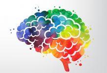 alimentos que ajudam a prevenir o Alzheimer - ilustração de um cérebro