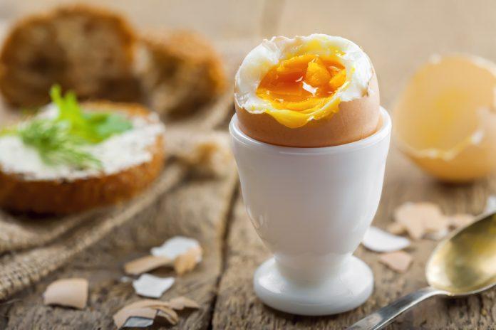 16 receitas com ovo cozido